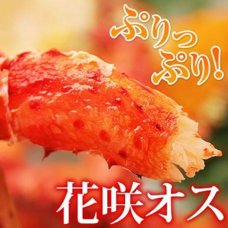 かにまみれ 花咲ガニ(オス)