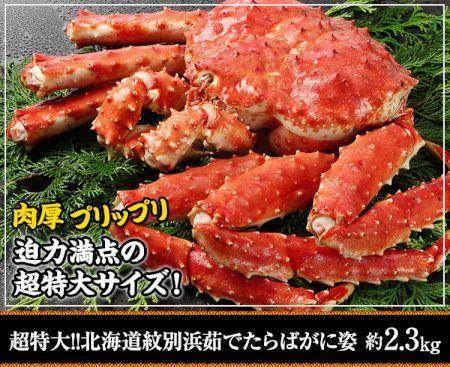 かに本舗:超特大!!北海道紋別浜茹で たらばがに姿 約2.3kg
