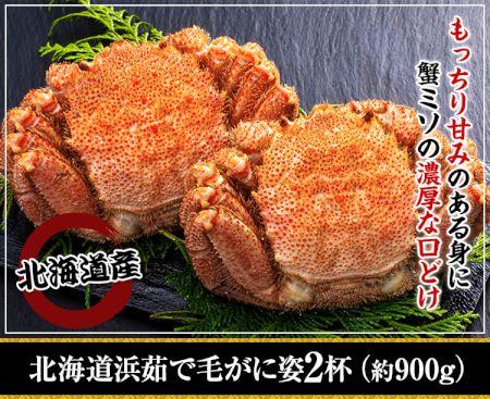 かに本舗:北海道紋別浜茹で 毛がに姿 2杯(約900g)