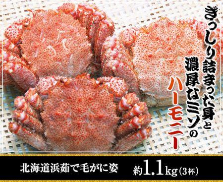 かに本舗:北海道浜茹で毛蟹姿約 1.1kg(3杯)