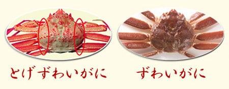 トゲズワイガニ食レポ トゲズワイガニと普通のズワイガニの違い