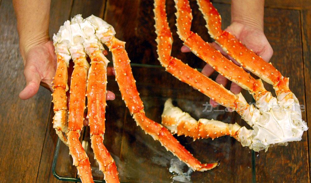 食レポ「タラバガニ』:手で持つ