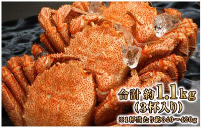 カニ本舗「北海道浜茹で毛がに姿約1.1kg(3杯)」